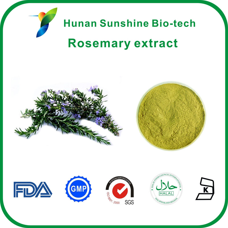 Carnosic Acid,Rosmarinic acid,Rosemary Extract